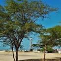 imagem de Caiçara do Norte Rio Grande do Norte n-12