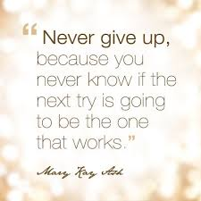 Never Give Up Because You Never Know If The Next Try Is Going To Be Best Mary Kay Quotes