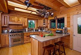Log Cabin Living Room Concept Best Inspiration