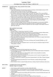 Sample Resume Manager Budget Manager Resume Samples Velvet Jobs 24