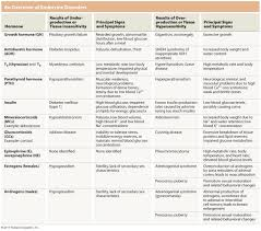 Chart Of Endocrine Glands And Hormones Chart On Endocrine