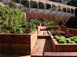 Small Picture Garden Design Raised Beds Planter Bed Vegetable With Inspiration