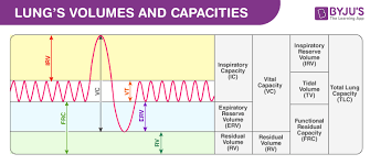 Normal Lung Volumes And Capacities Chart Lung Volumes And Lung Capacity An Overview