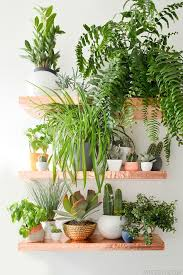 Best 25+ Plant shelves ideas on Pinterest | Plant wall, Small shelves and  Set of