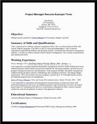 Sample Resume Objective Statement Resume For Your Job Application