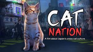 Hd cats 2019 filme completo legendado. Watch Kedi Prime Video
