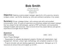 Best Objective Statements For Resumes Resume Creator Simple Source