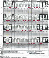 Periodontal Examination Showing Localized Chronic