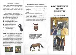 Equine Dentistry Services - Tracie A. Daniels, D.v.m.
