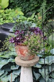 Container Garden Design Custom Inspiration Ideas