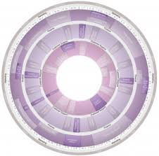 Circle Calendar Template Templates