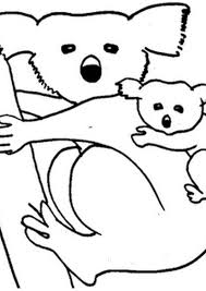 koala coloring pages with koala coloring page koala coloring pages archives best coloring page on flygon coloring pages