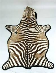 zebra skin rug zebra skin rug south africa