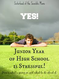 yes junior year of high school is stressful sisterhood of the junior year of high school is stressful be the most stressful of them