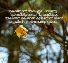 Kwikk Malayalam Quote Images Collection