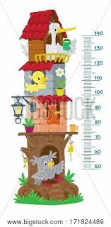Growth Of A Chicken Chart Meter Wall Height Vector Photo Free Trial Bigstock