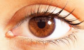 Pics Of Eyes Ozone Ayurvedics Launches Herbal Solution For Dry Eyes