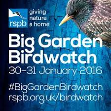 Image result for big garden birdwatch 2016