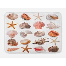 Seashells Bath Mat Seashell Collection Scallop Nautilus Mollusk Summer Holiday Destinations Marine Non Slip Plush Mat Bathroom Kitchen Laundry Room