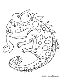 Small Picture Coloring Pages Of Camouflage Animals Coloring Pages