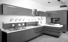 Latest In Kitchen Cabinets Latest Kitchen Cabinet Design Italian On Kitchen Italian Design