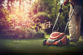Your Guide to the Best Lawn Mowers Types, Features & More