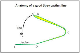 D Loop Spey Casting Anatomy Of A Good Spey Casting Line