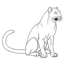Small Picture 10 Printable Panther Coloring Pages Your Toddler Will Love