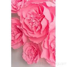 Pink Paper Flower Decorations Paper Flowers Decoration Crepe Paper Flower Giant Paper
