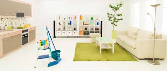 carpet cleaning howick east auckland clean my carpets