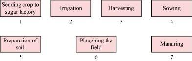 Arrange The Following Boxes In Proper Order Tomake A Flow