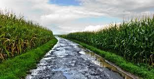 Corn Moisture Equilibrium Chart Grain Moisture Content Impacts Stored Grain Profits At Sale