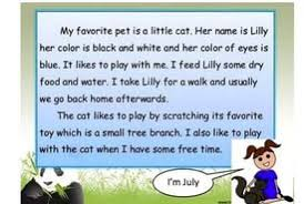 essay my pet animal cat  essay my pet animal cat