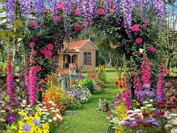 beautiful flower garden fvpmjy