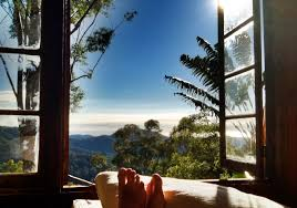 The 25 Best Treehouse Hotel Ideas On Pinterest  Amazing Tree Treehouse Accommodation Nsw