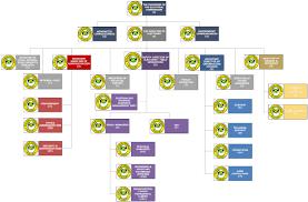 Parish Council Organizational Chart In Jamaica 80 Unbiased Parish Organizational Chart