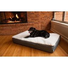 dog bed furniture. delighful bed in dog bed furniture