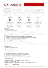 sales assistant cv example  shop  store  resume  retail curriculum    sales assistant cv