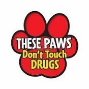 Image result for red ribbon week 2019 images