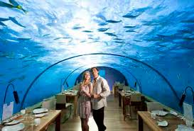 Best Underwater Hotels in the World Fiji Dubai Florida More