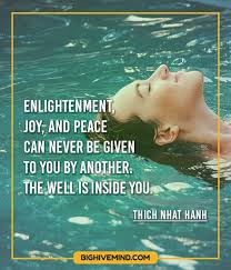 Enlightenment Quotes Magnificent 48 Quotes About Enlightenment And Spirituality Big Hive Mind