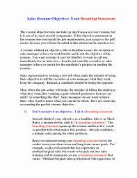Social Work Resume Objective Statements Resume Objective Statements Examples Best Of Resume Objective 13