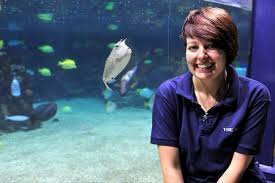 Fancy Working At Hull's The Deep? These 4 Jobs Are Currently Being ...