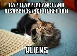 Funny cat pictures Quotes Best Life 100 Funniest Cat Memes Ever