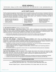 Business Plan Template For Service Company New Microsoft Word