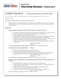 How To Write A Resume For A Federal Job How To Write Resume Forernment Job Template Examples Ontario A For 12