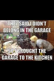 Mechanic Quotes Custom 48 Best Mechanics Images On Pinterest Autos Funny Images And Car