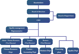 Human Resource Organizational Structure Chart Organizational Structure And Human Resource