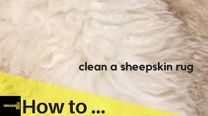 how to clean a sheepskin rug so easy