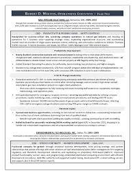 Environmental Officer Sample Resume Fascinating Best Executive Resume Writer Sample Resume COO GM Resume
